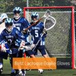 Best Lacrosse Goalie Gloves
