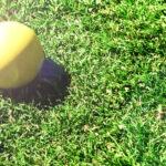Shoot A Lacrosse Ball